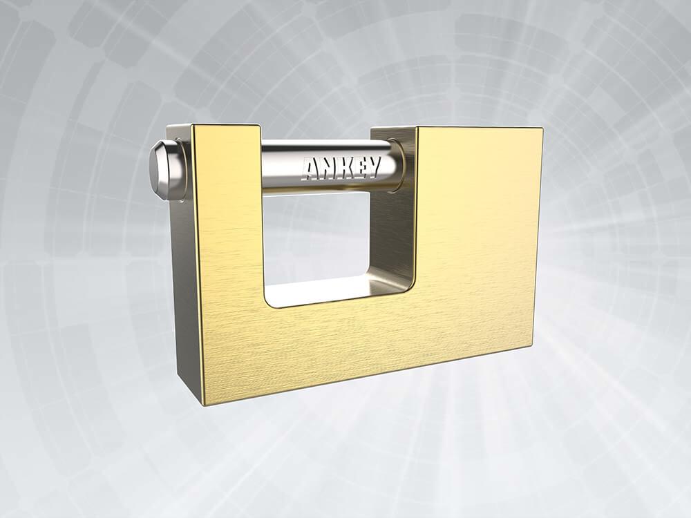 Insurance padlock
