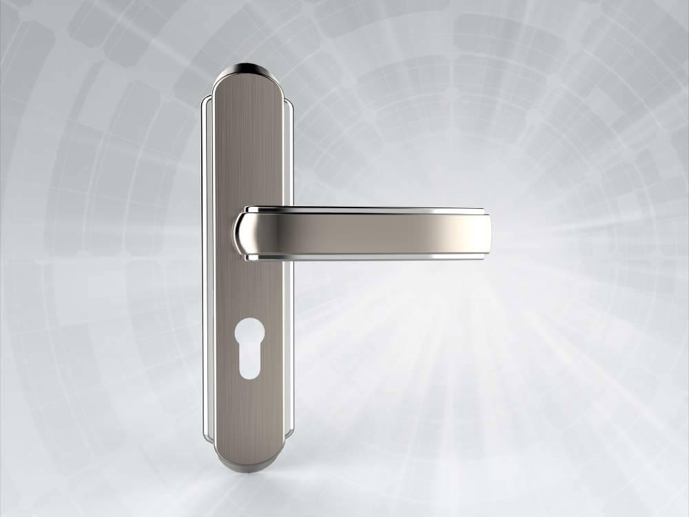 Stainless Steel Door Handle DH0037